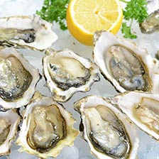 Emerald Cove Oysters
