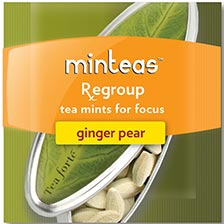 Tea Forte Minteas - Regroup - Ginger Pear