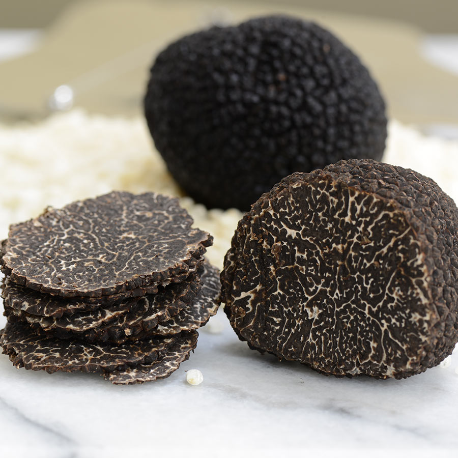Fresh Black Perigord Truffle Buy Black Winter Truffles