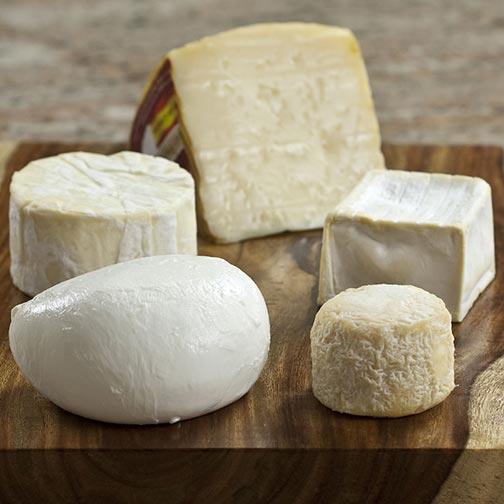 5 Favorites Cheese S&ler & Gourmet Cheese Platter | Cheese Sampler Platter
