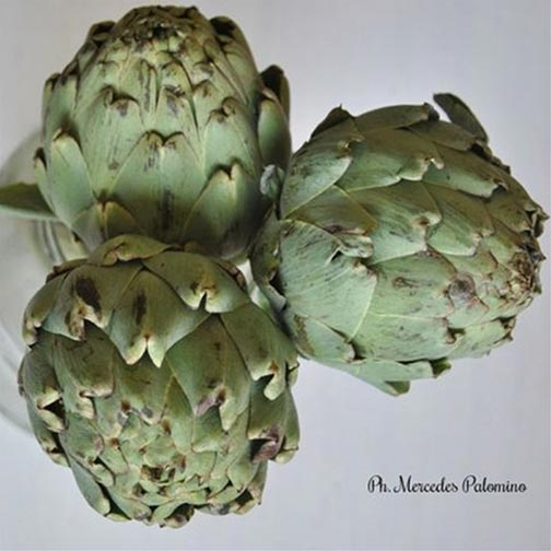 Artichokes In Lemon And Salt Recipe