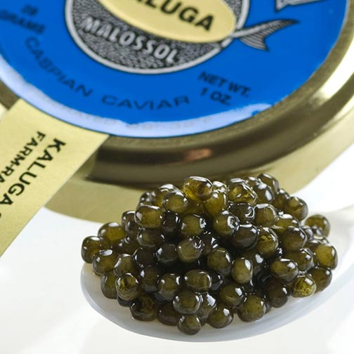 Kaluga Sturgeon Caviar - Malossol, Farm Rised