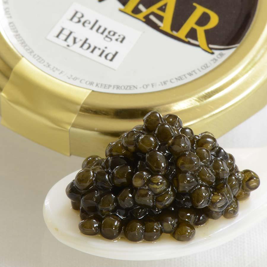 Beluga Hybrid Caviar For Sale   Buy Caviar Online